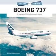 [해외]Boeing 737