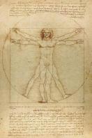 [해외]Leonardo Da Vinci Notebooks - The Vitruvian Man