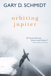 [해외]Orbiting Jupiter