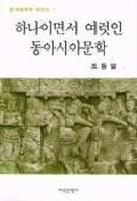 하나이면서 여럿인 동아시아문학