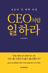 CEO처럼 일하라