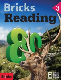 Bricks Reading 80. 3: SB(WB+CD)