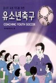 유소년 축구(꿈나무 육성 지도를 위한)