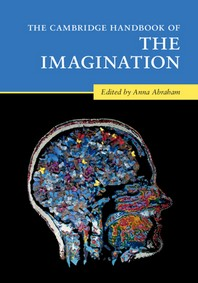 [해외]The Cambridge Handbook of the Imagination