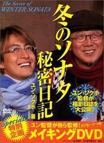 冬のソナタ秘密日記 DVD付