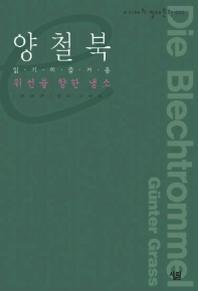 양철북(e시대의 절대문학 12)