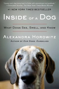 [해외]Inside of a Dog (Paperback)