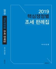핵심쟁점별 조세 판례집(2019)