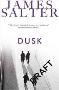 [해외]Dusk (Paperback)
