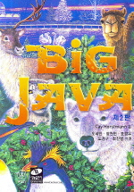 BIG JAVA(번역판)(CD1장포함)