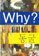 Why 동굴