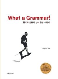 원리와 실용의 영어 문법수련서(What a Grammar!)