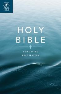 [해외]Text Bible-NLT-Economy