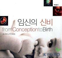 임신의 신비