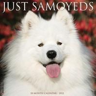 [해외]Just Samoyeds 2022 Wall Calendar (Dog Breed)