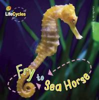 Fry to Seahorse