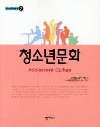청소년 문화(청소년학총서 2)