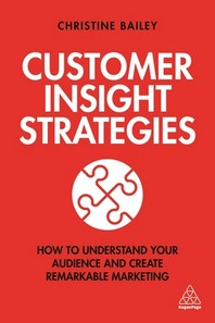 [해외]Customer Insight Strategies