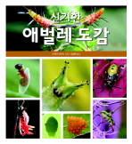 신기한 애벌레 도감