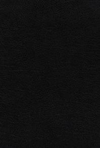 [해외]Niv, the Grace and Truth Study Bible, Large Print, European Bonded Leather, Black, Red Letter, Thumb Indexed, Comfort Print (Bonded Leather)
