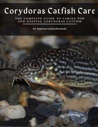 [해외]Corydoras Catfish Care