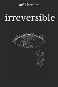 [해외]irreversible