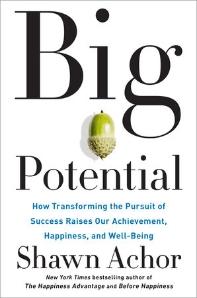 [해외]Big Potential (Hardcover)