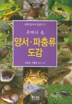 양서 파충류 도감(주머니 속)(생태탐사의 길잡이 5)(포켓북(문고판))