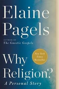 [해외]Why Religion?