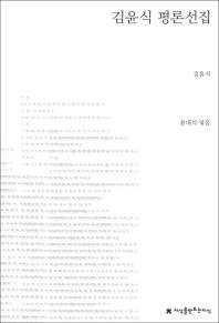 김윤식 평론선집(지식을만드는지식 한국문학평론)