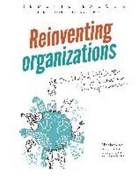 [해외]Reinventing Organizations