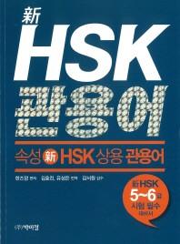 신 HSK 상용 관용어