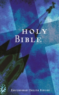 [해외]Economical Bible-Cev