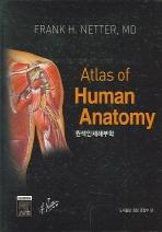 원색인체해부학 (ATLAS OF HUMAN ANATOMY)(양장본 HardCover)