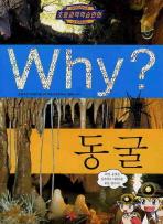 Why 동굴 #