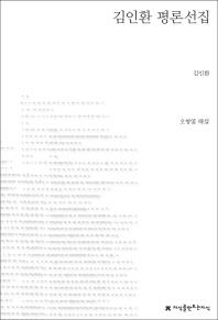 김인환 평론선집(지식을만드는지식 한국평론)
