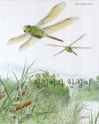 왕잠자리 한살이(세밀화로 보는)(권혁도 세밀화 그림책 6)(양장본 HardCover)