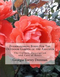 Everblooming Roses For The Outdoor Garden of the Amateur