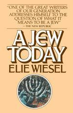 [해외]Jew Today (Paperback)