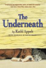 [해외]The Underneath (Hardcover)