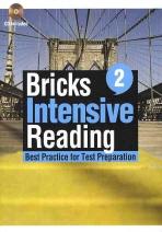 BRICKS INTENSIVE READING. 2