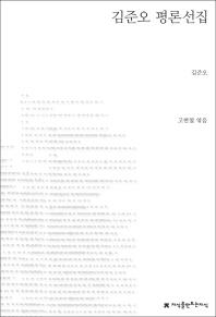 김준오 평론선집(지식을만드는지식 한국문학평론)
