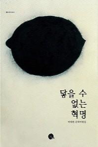 닿을 수 없는 혁명(INK 인문비평서 1)
