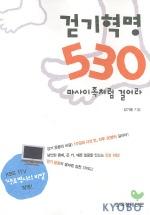 걷기혁명 530 마사이족처럼 걸어라(전2권)