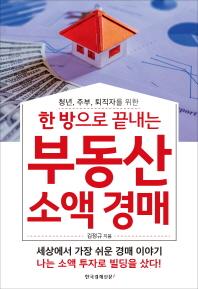 한 방으로 끝내는 부동산 소액 경매(청년, 주부, 퇴직자를 위한)
