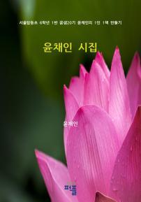 윤채인 시집