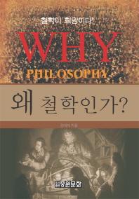 왜 철학인가(중원문화 아카데미 신서 117)(양장본 HardCover)