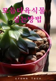 모듬다육식물 심는방법
