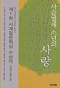 사슴벌레 소년의 사랑(사계절1318문고 27)