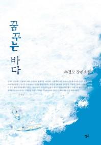 꿈꾸는 바다 ///6053